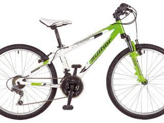 Biciclete de la cei mai renumiti producatori: Author, Giant,Cube, Kross, Masterteh, Hibike!