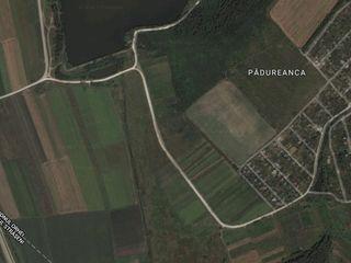 Vand teren extravilan in satul Peresecina + casa in sat