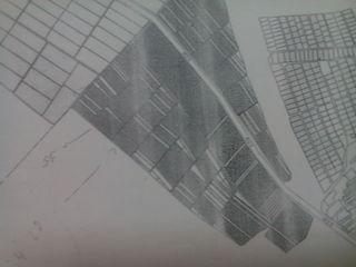 Криуляны  ( окраина)   от  10-20 га   под зерновые. У  Дороги