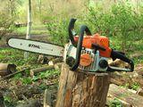 Tăierea copacilor înclinați sau deteriorați