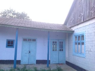 Casa in satul Salcuta