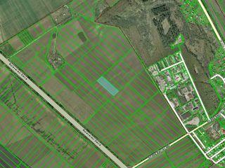 Banca vinde teren agricol 1 ha