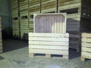 Containere din lemn boxpalet