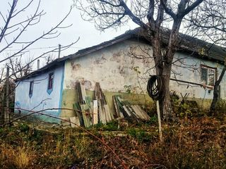 Casă de locuit + teren (14 ar) spre vânzare. R-nul Criuleni, com. Hrușova, satul Ciopleni