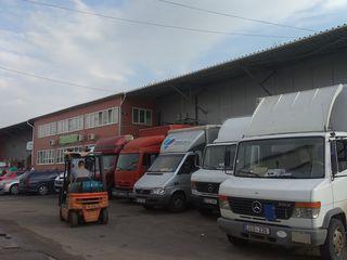 Hamali Evacuator Asamblare si dezasamblarea mobilei Evacuarea gunoi  Грузчики Кишинёв Молдова   Офис