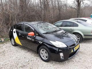 Șofer taxi pe toyota  prius