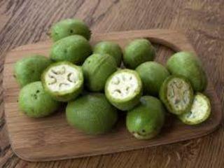 Продажа Зеленый орех