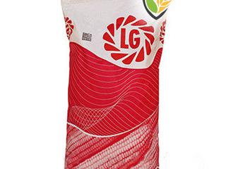 Limagrain LG: semințe de porumb / семена кукурузы
