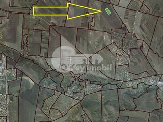 Teren agricol, Cruzești, 374 ari, 28000 € !