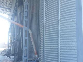 Pentru pastrarea cerialelor 3 bunceri la 100 toni 1