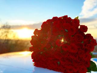 Trandafiri - cele mai bune preturi ,buchete la comanda, ursi de plus  ! Livrare
