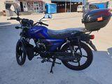 Alpha moto model nou 2019