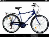City Bike (асфальт/переч.местность)