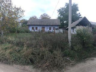 Se vinde teren cu casa  ! 0.11ha (11 sotci) la Cobusca Noua, raionul Anenii Noi