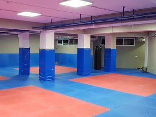 C.S.A Telecentru (Combat Sambo ,MMA, Kickboxing)