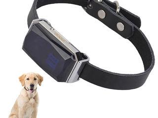 GPS Tracker pentru animale de companie : pisica , ciine ..