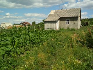 Se vinde urgent casa Cheltuitor (Келтуитор), com. Tohatin! 4km de Chisinau!