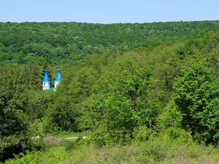 Oferta unica in Moldova! 1,50 ha sub constructie in Codrii Moldovei