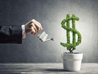 Investiții cu profit anual de la 36 %