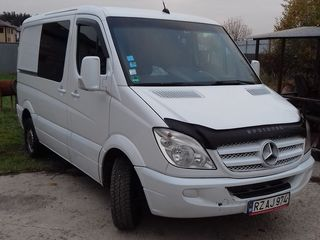 Mercedes Sprinter Delfin