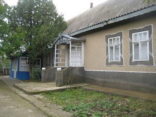 casa in Purcari