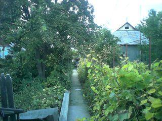 Меняю  дом в г. Бендеры на Кишинев или пригород.