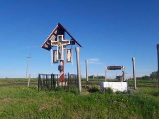 Bine Ati Venit In Satul Cobilea La Stejar lui Stefan cel mare