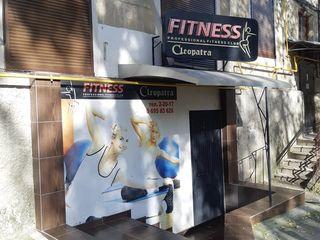 Продам готовый Бизнес! Фитнес Клуб Клеопатра! в Центре!