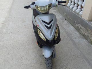 Viper Viper Rex Moto