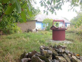 Se vinde casa linga padure Satul Stircea Glodeni