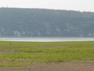 Un loc pitoresc, pe malul riului Nistru.