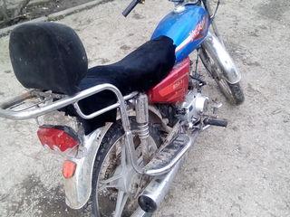 Alpha Moto 5