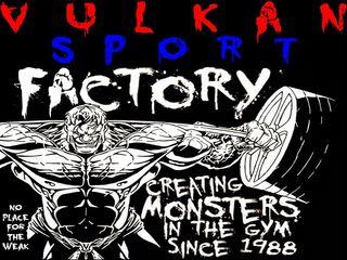 Vulkan Sport - от 6,41 лей до 11,53 лей за тренировку в день ! Буюканы.