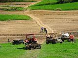 Cumpăr teren agricol în r-nul Cantemir sau Leova!