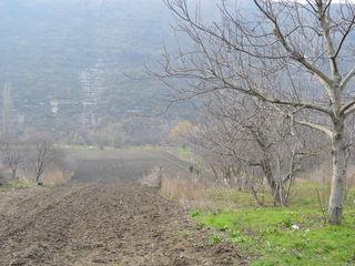 188 metri spre Răut cu casă veche și teren 0,30 ha în centrul Butucenilor, Orheiul Vechi