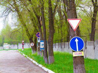 Școаla auto, Sectorul Rîșcani, Miron Costin 7, grupe de dimineața și seara