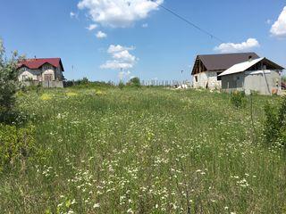 Teren pentru construcții, 8 ari, Dănceni, Ialoveni