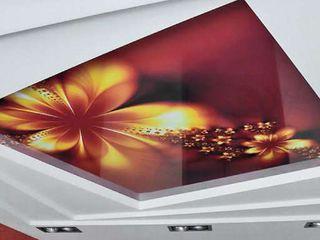 Французкие натяжные потолки 99lei ''protavan-group''srl !! tavane extensibile! ferestre usi pvc