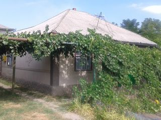 Se vinde casa in orasul Soroca,raionul Bujereuca.