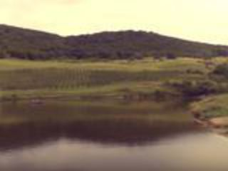 Сдается 2,5 га земли и озеро в частной собственности! в Кодрах Молдовы!!!