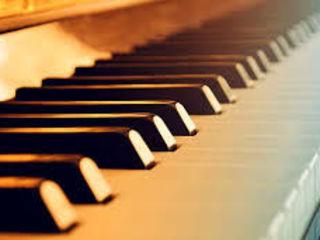 Telecentru,lectii de pian si canto pentru copii si adulti