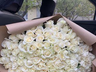 Trandafiri premium , primim comenzi de peste hotare - livrare / доставка