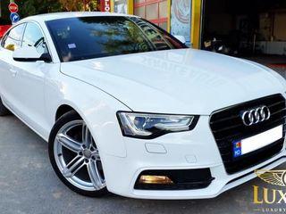 Audi A5 Sline automat audi A3 A4 A5 A6 A7 A8 audi Q3 Q5 Q7 procat auto chirie mașini transfer hotel