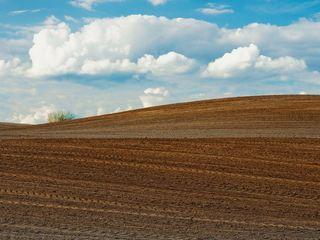teren arabil Ungheni