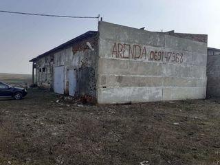 Сдается сухой склад в селе Gura Cainarului