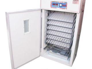 Incubator ms-528/găină - 528 oua/gîscă - 192/ garantie/livrare gratuita/in rate la 0%/ 11970 lei