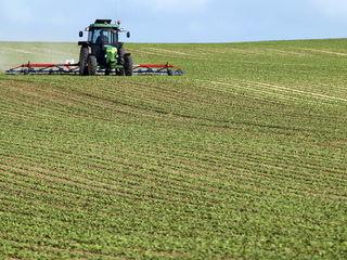 Cumpar teren agricol in raionul Ungheni