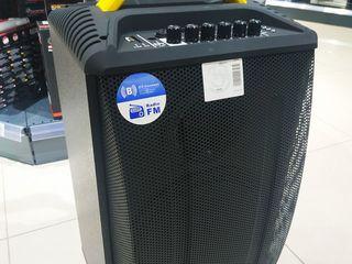 Temeisheng QX 1014 / 250 wat 2 микрофона +bluetooth+fm+usb+sd+супер подарок