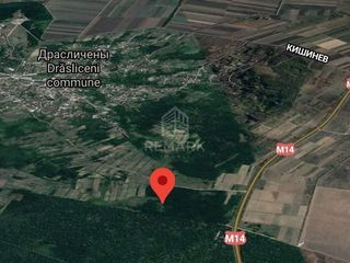 Se vinde teren, 61 ari în pădure, Drăsliceni, rn. Criuleni!
