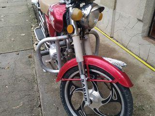 Alpha Moto Sabur